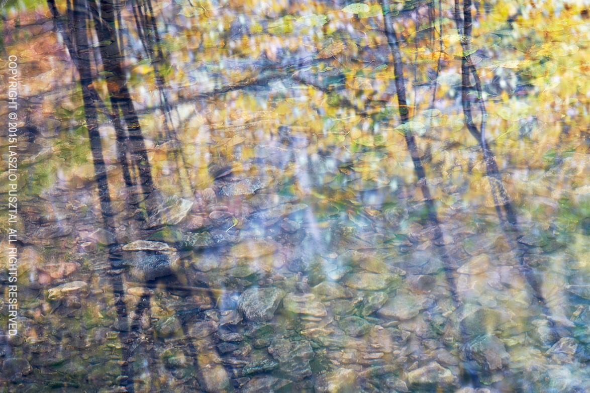 Fall Stream Reflection