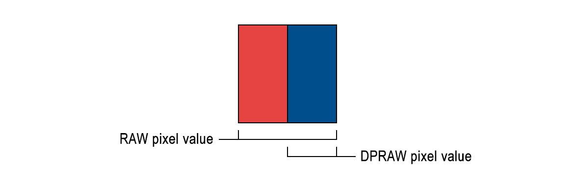 The RAW data section contains pixel values with the sum left and right sides of the photodiode, while the DPRAW section contains pixel values from just one side of each photodiode.